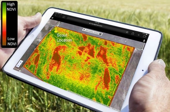 NDVI in agriculture, agriculture drone services