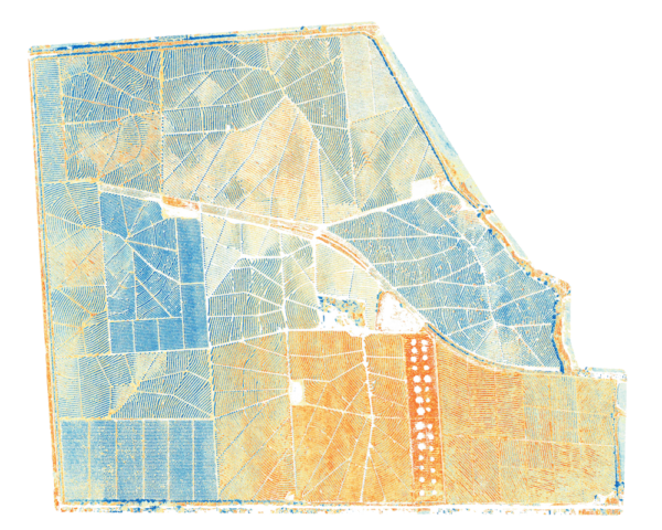 Multispectral map of tree plantation using Micasense Rededge