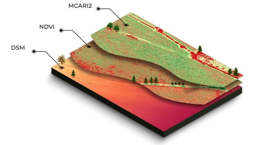 layered data from multispectral trial plots mapping