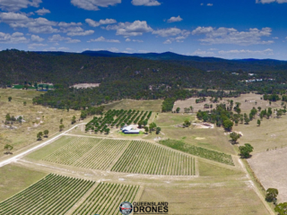 aerial photography of a vineyard