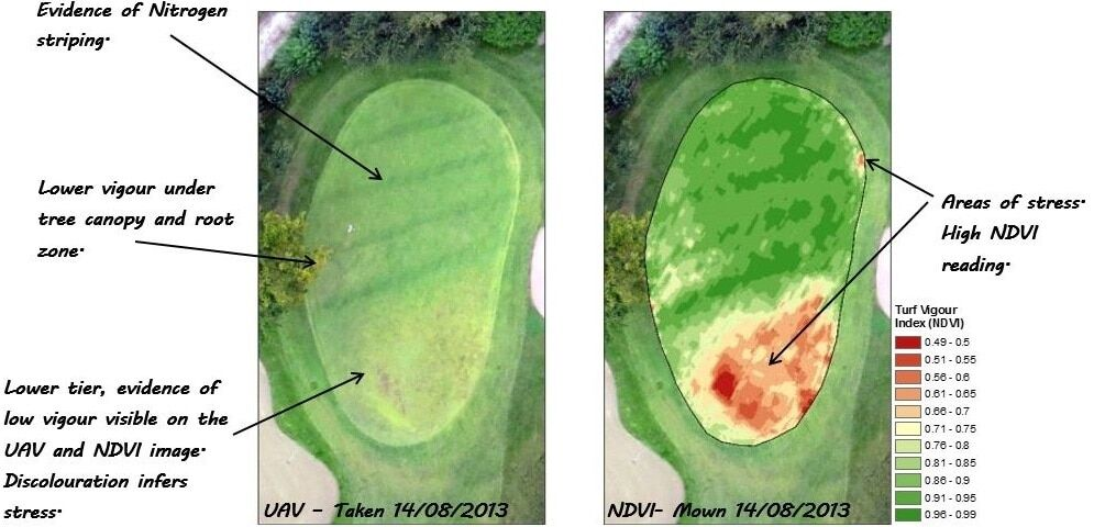 NDVI for golf course management