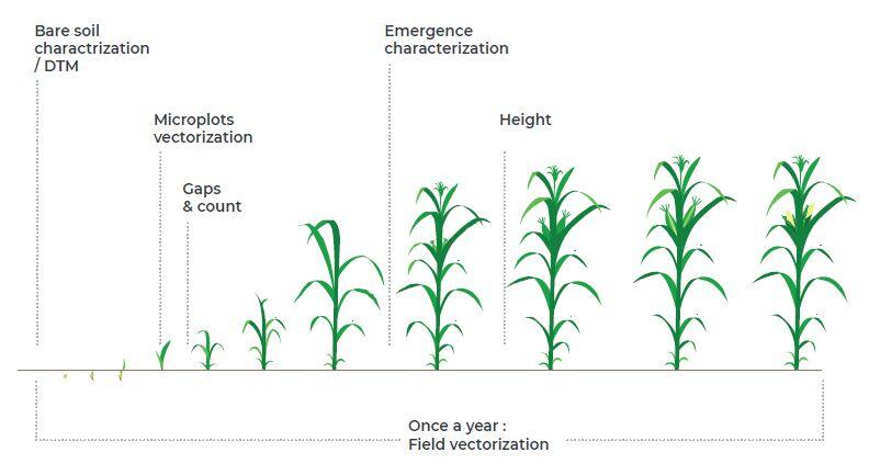 Program to manage performance of seed trials and trial plots
